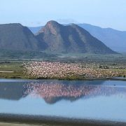 Lake Elementaita excursions image 1