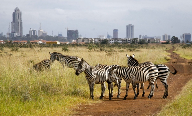Long safari itineraries image 1
