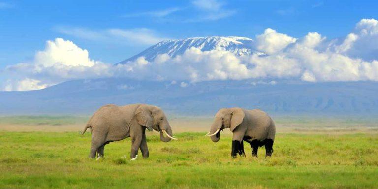 Safari itinerary 1 (2)