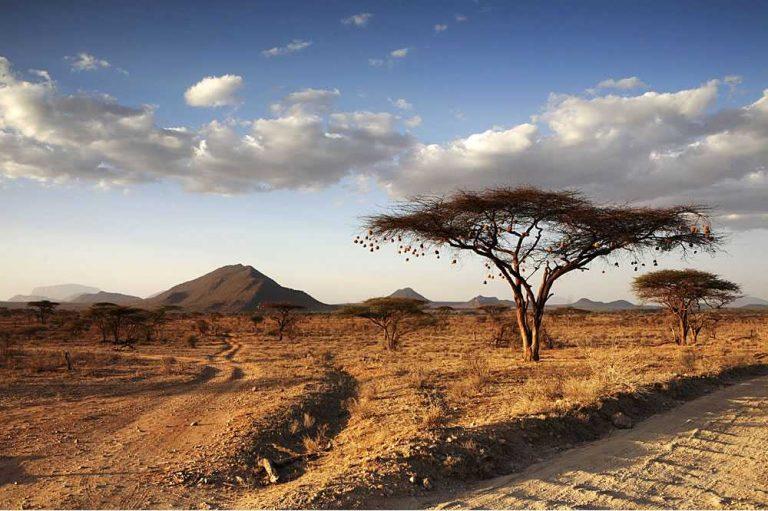Safari itinerary 1 (4 days)