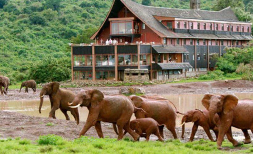 safari itinerary 1 (5)